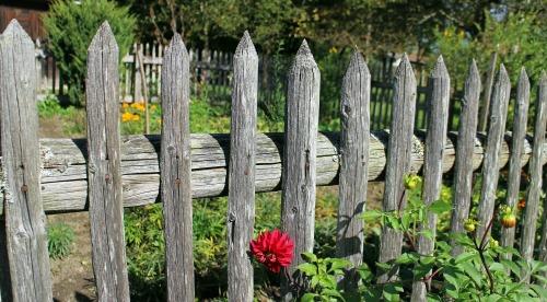 garden-fence-484708_1920